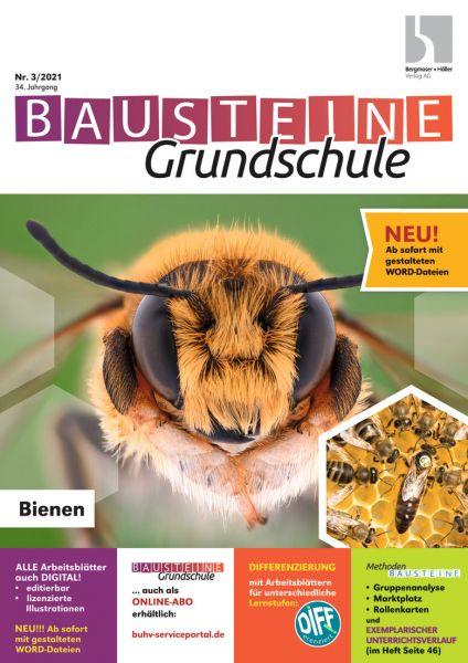 Bausteine Grundschule (online)